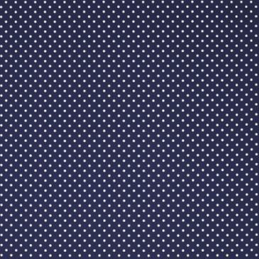 Fabric VICHYDOTS.42.140