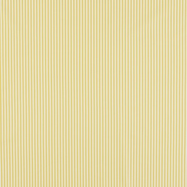 Fabric VICHYRAY.219.140